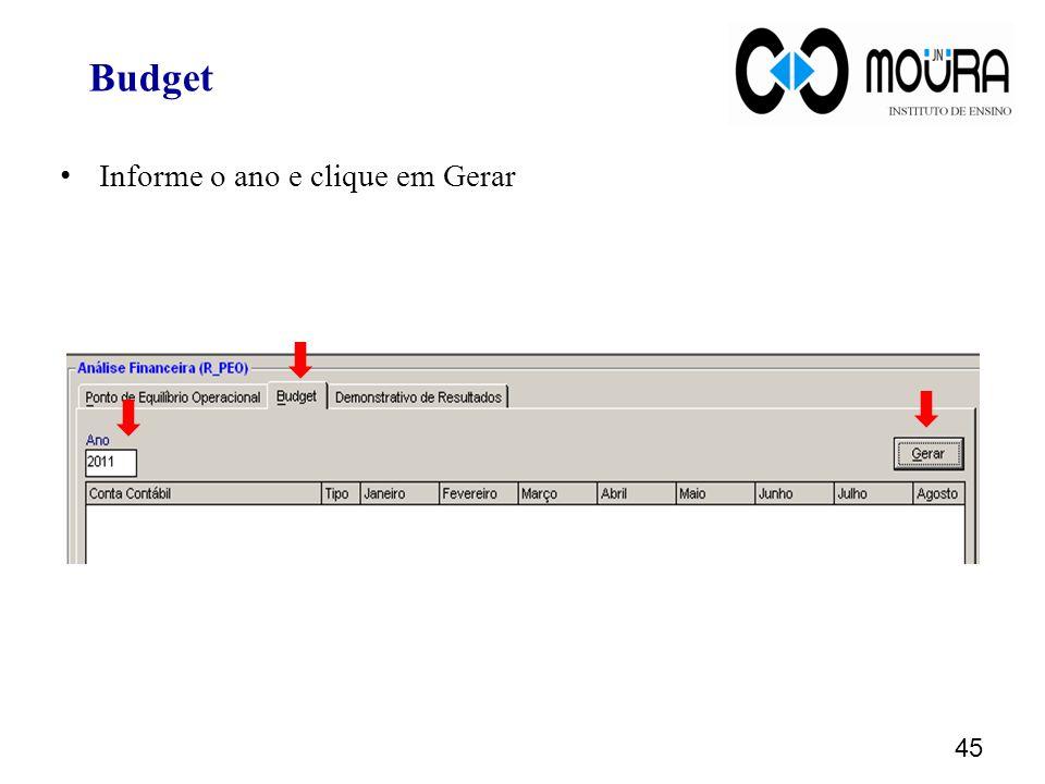 Informe o ano e clique em Gerar 45 Budget