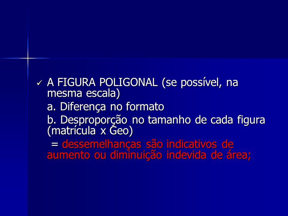 A FIGURA POLIGONAL (se possível, na mesma escala) A FIGURA POLIGONAL (se possível, na mesma escala) a. Diferença no formato a. Diferença no formato b.