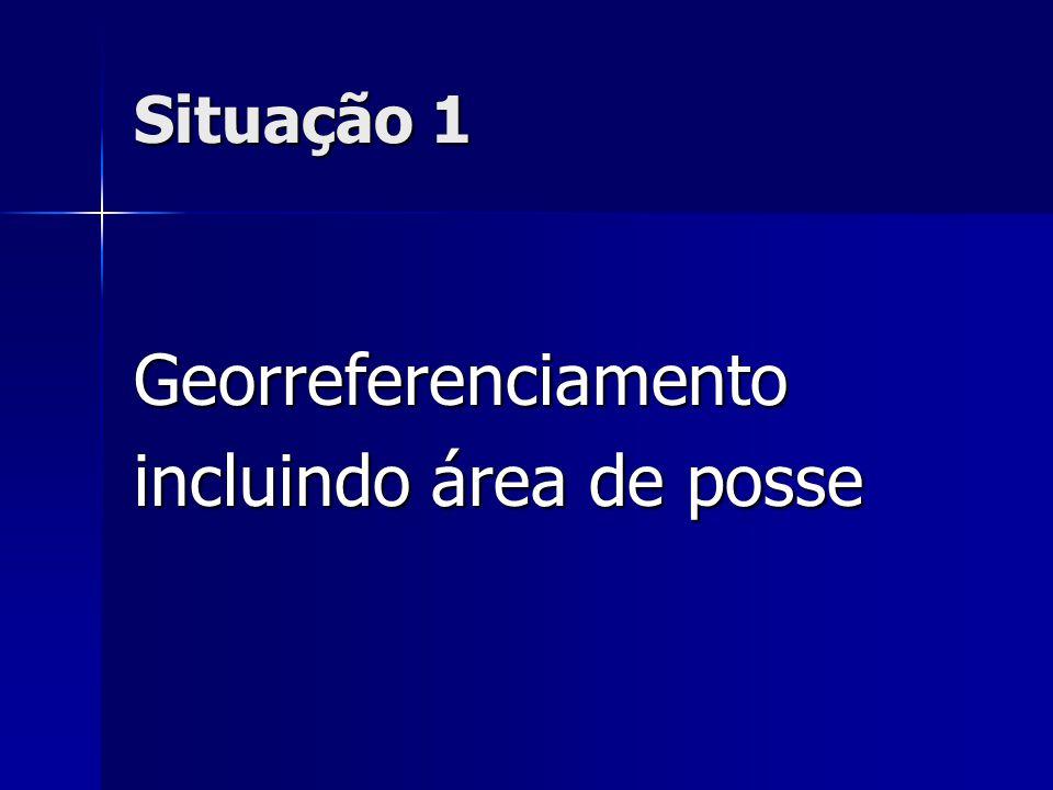 Situação 1 Georreferenciamento incluindo área de posse