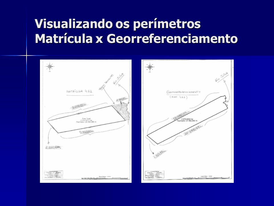 Visualizando os perímetros Matrícula x Georreferenciamento