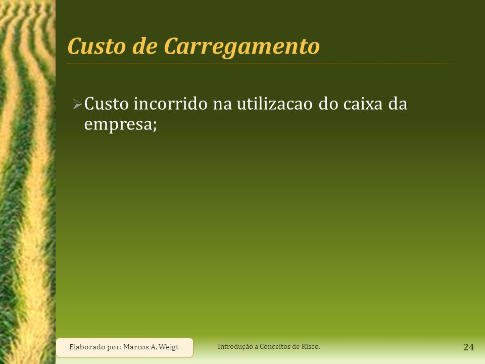 Custo de Carregamento  Custo incorrido na utilizacao do caixa da empresa; 24 Elaborado por: Marcos A. Weigt Introdução a Conceitos de Risco.