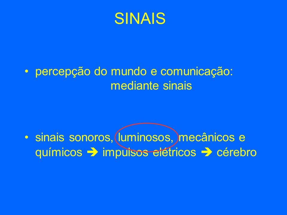 SINAIS percepção do mundo e comunicação: mediante sinais sinais sonoros, luminosos, mecânicos e químicos  impulsos elétricos  cérebro