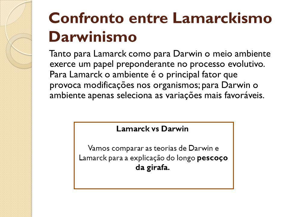 Confronto entre Lamarckismo Darwinismo Tanto para Lamarck como para Darwin o meio ambiente exerce um papel preponderante no processo evolutivo. Para L