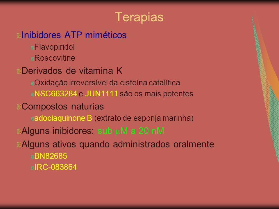 Inibidores ATP miméticos Flavopiridol Roscovitine Derivados de vitamina K Oxidação irreversível da cisteína catalítica NSC663284 e JUN1111 são os mais potentes Compostos naturias adociaquinone B (extrato de esponja marinha) Alguns inibidores: sub  M a 20 nM Alguns ativos quando administrados oralmente BN82685 IRC-083864 Terapias