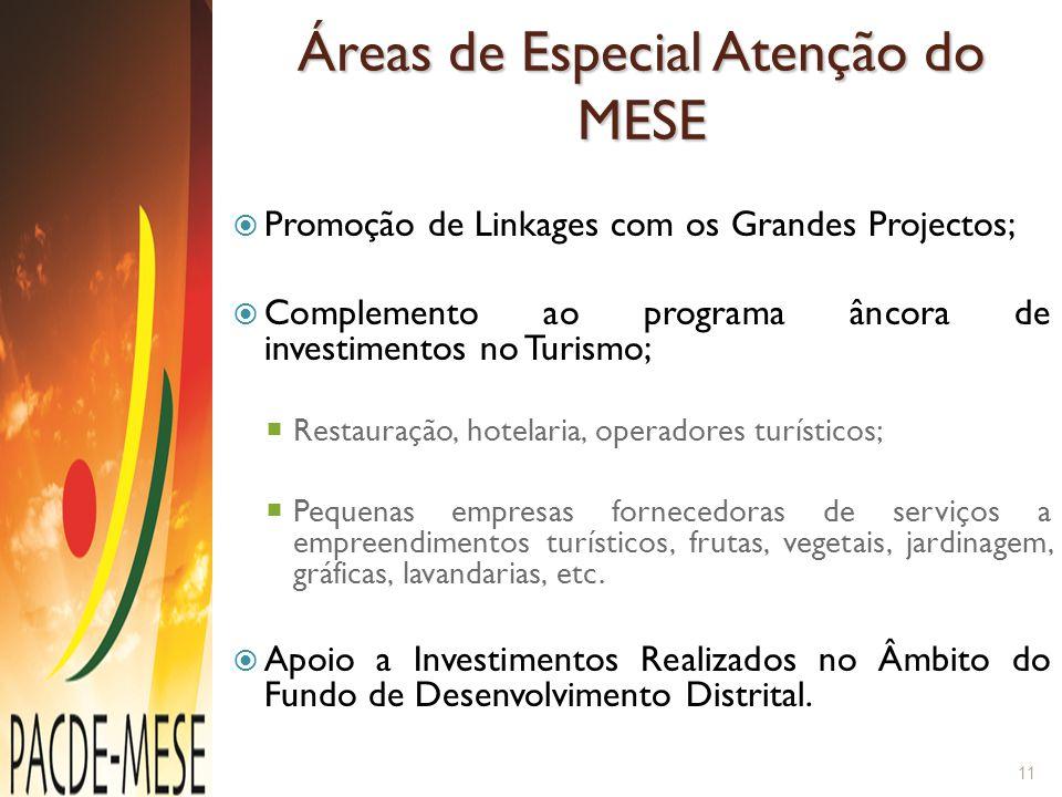 Áreas de Especial Atenção do MESE  Promoção de Linkages com os Grandes Projectos;  Complemento ao programa âncora de investimentos no Turismo;  Res