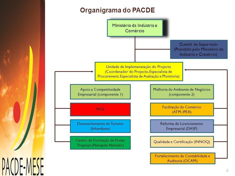 Ministério da Indústria e Comércio Comité de Supervisão (Presidido pelo Ministério de Indústria e Comércio) Unidade de Implemenatação do Projecto (Coo