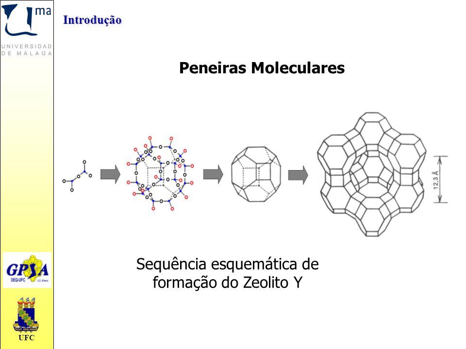 UFC Introdução Peneiras Moleculares Sequência esquemática de formação do Zeolito Y