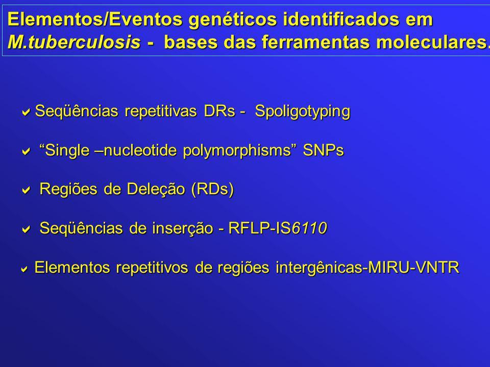 """Elementos/Eventos genéticos identificados em M.tuberculosis - bases das ferramentas moleculares.  Seqüências repetitivas DRs - Spoligotyping  """"Singl"""