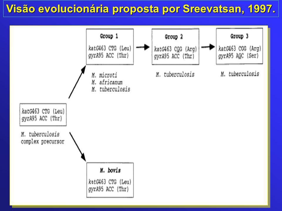 Visão evolucionária proposta por Sreevatsan, 1997.