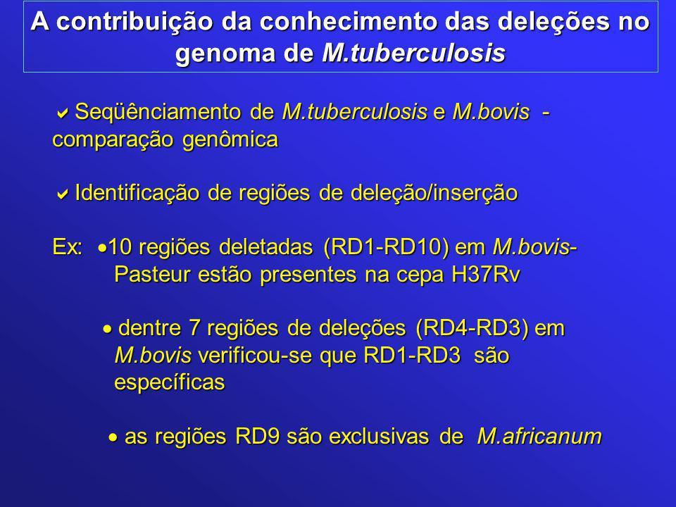A contribuição da conhecimento das deleções no genoma de M.tuberculosis  Seqüênciamento de M.tuberculosis e M.bovis - comparação genômica  Identificação de regiões de deleção/inserção Ex:  10 regiões deletadas (RD1-RD10) em M.bovis- Pasteur estão presentes na cepa H37Rv Pasteur estão presentes na cepa H37Rv  dentre 7 regiões de deleções (RD4-RD3) em  dentre 7 regiões de deleções (RD4-RD3) em M.bovis verificou-se que RD1-RD3 são M.bovis verificou-se que RD1-RD3 são específicas específicas  as regiões RD9 são exclusivas de M.africanum  as regiões RD9 são exclusivas de M.africanum
