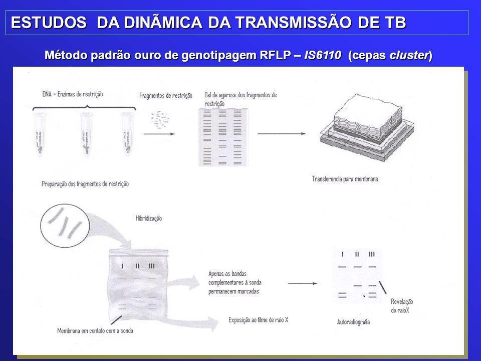 ESTUDOS DA DINÃMICA DA TRANSMISSÃO DE TB Método padrão ouro de genotipagem RFLP – IS6110 (cepas cluster)