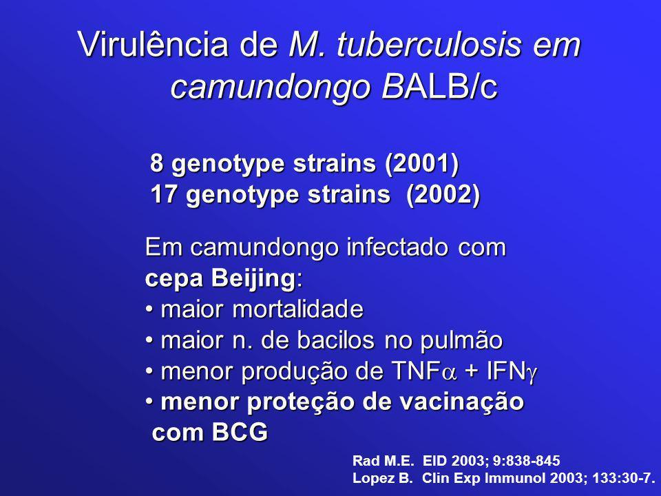 8 genotype strains (2001) 17 genotype strains (2002) Em camundongo infectado com cepa Beijing: maior mortalidade maior mortalidade maior n. de bacilos