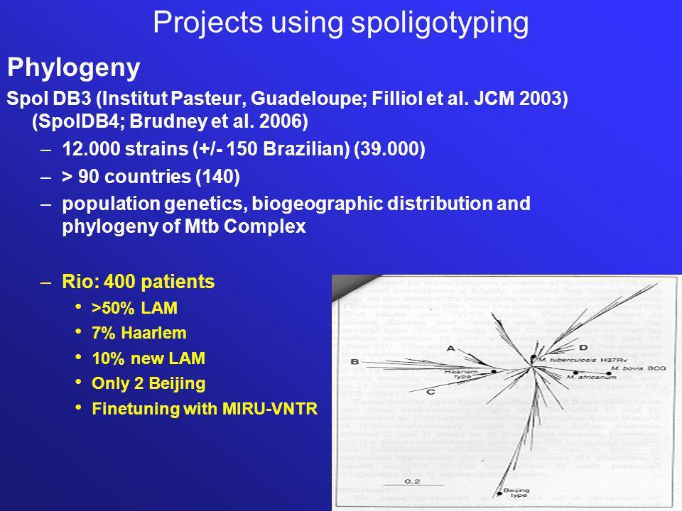 Projects using spoligotyping Phylogeny Spol DB3 (Institut Pasteur, Guadeloupe; Filliol et al.