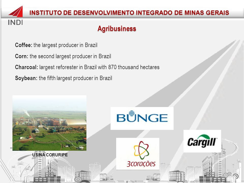 Agribusiness Coffee: the largest producer in Brazil Corn: the second largest producer in Brazil Charcoal: largest reforester in Brazil with 870 thousa