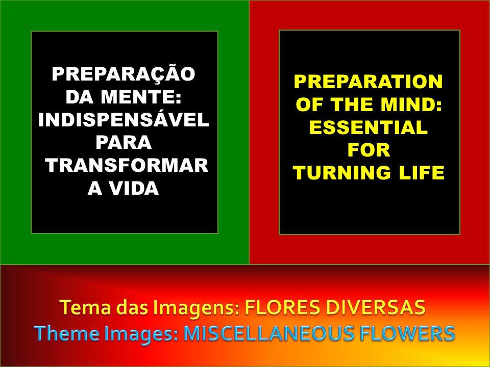 PREPARAÇÃO DA MENTE: INDISPENSÁVEL PARA TRANSFORMAR A VIDA PREPARATION OF THE MIND: ESSENTIAL FOR TURNING LIFE
