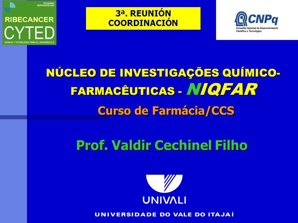 NÚCLEO DE INVESTIGAÇÕES QUÍMICO- FARMACÊUTICAS - NIQFAR Curso de Farmácia/CCS Prof.