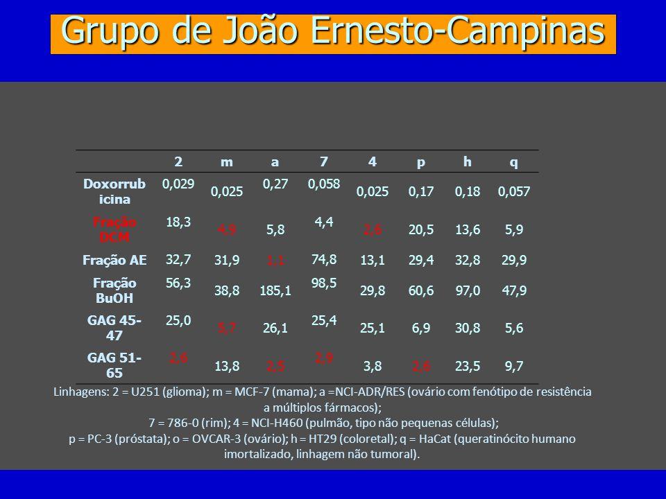 Grupo de João Ernesto-Campinas 2ma 7 4phq Doxorrub icina 0,029 0,025 0,270,058 0,0250,170,180,057 Fração DCM 18,3 4,95,8 4,4 2,620,513,65,9 Fração AE 32,7 31,91,1 74,8 13,129,432,829,9 Fração BuOH 56,3 38,8185,1 98,5 29,860,697,047,9 GAG 45- 47 25,0 5,726,1 25,4 25,16,930,85,6 GAG 51- 65 2,6 13,82,5 2,9 3,82,623,59,7 Linhagens: 2 = U251 (glioma); m = MCF-7 (mama); a =NCI-ADR/RES (ovário com fenótipo de resistência a múltiplos fármacos); 7 = 786-0 (rim); 4 = NCI-H460 (pulmão, tipo não pequenas células); p = PC-3 (próstata); o = OVCAR-3 (ovário); h = HT29 (coloretal); q = HaCat (queratinócito humano imortalizado, linhagem não tumoral).