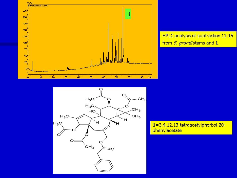 1 1=3,4,12,13-tetraacetylphorbol-20- phenylacetate HPLC analysis of subfraction 11-15 from S.