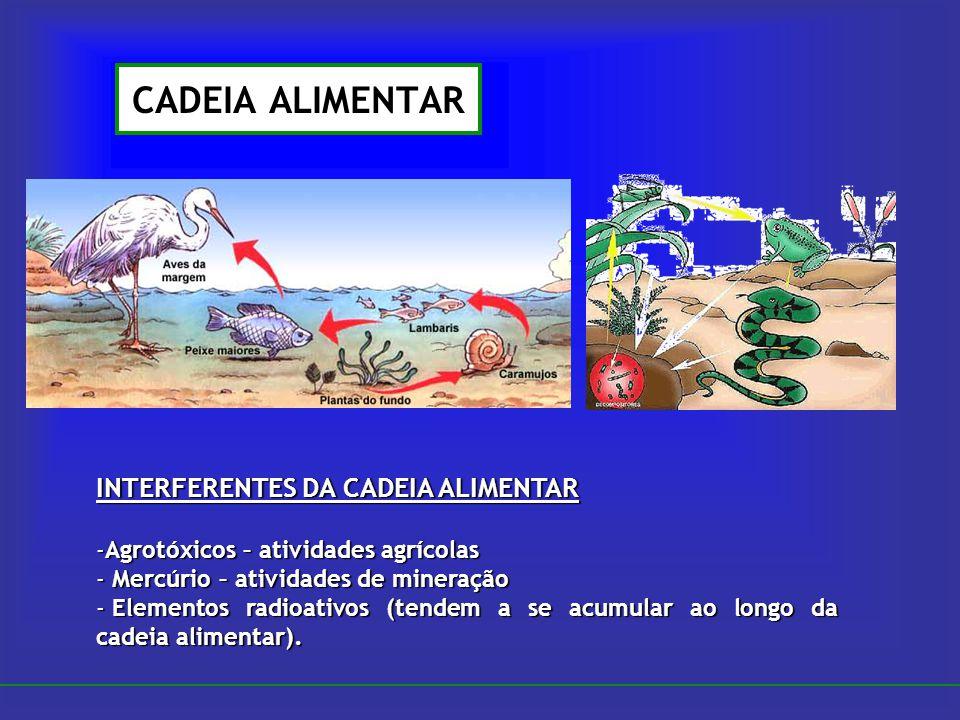 CADEIA ALIMENTAR INTERFERENTES DA CADEIA ALIMENTAR -Agrotóxicos – atividades agrícolas - Mercúrio – atividades de mineração - Elementos radioativos (t