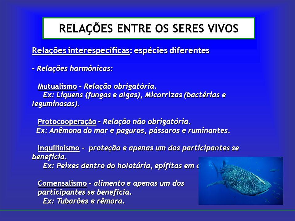 RELAÇÕES ENTRE OS SERES VIVOS Relações interespecíficas: espécies diferentes - Relações harmônicas: Mutualismo - Relação obrigatória. Ex: Liquens (fun