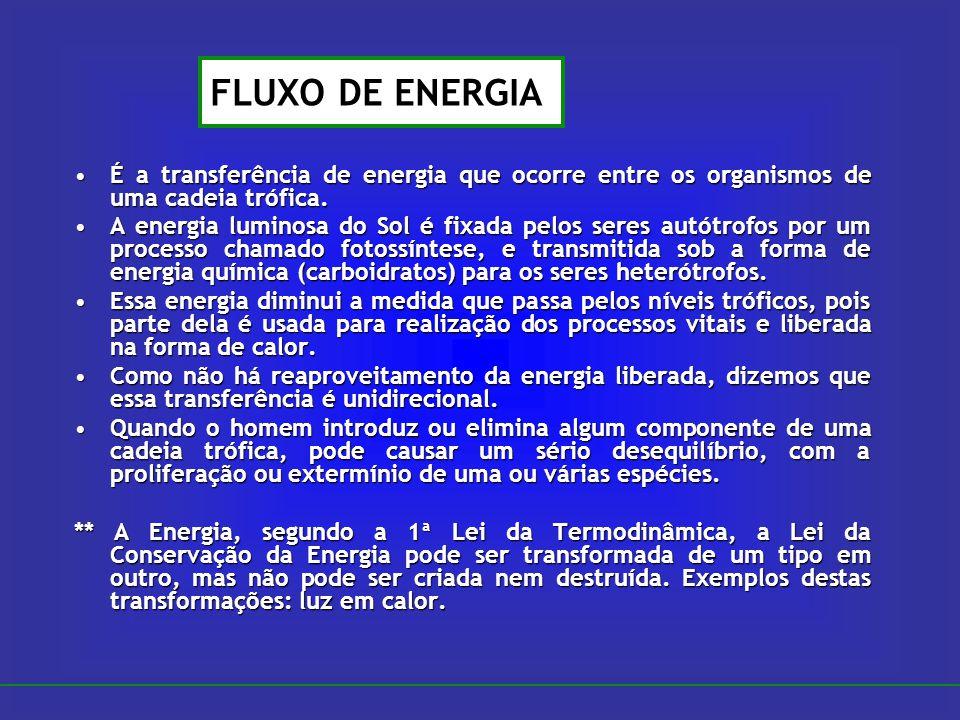 É a transferência de energia que ocorre entre os organismos de uma cadeia trófica.É a transferência de energia que ocorre entre os organismos de uma c