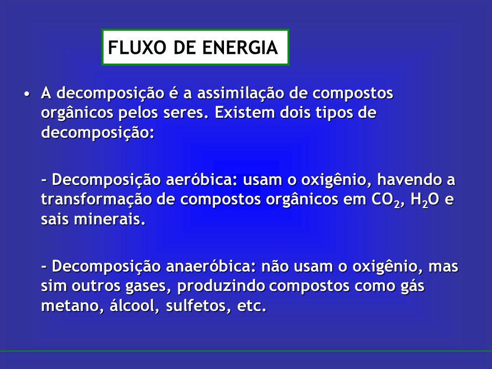 A decomposição é a assimilação de compostos orgânicos pelos seres. Existem dois tipos de decomposição:A decomposição é a assimilação de compostos orgâ