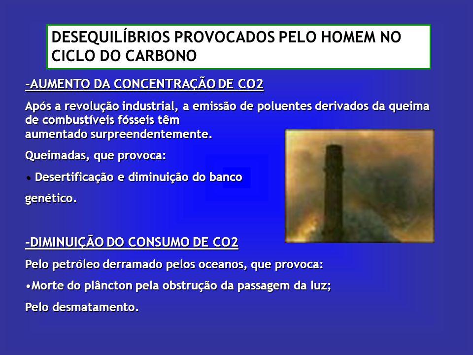 DESEQUILÍBRIOS PROVOCADOS PELO HOMEM NO CICLO DO CARBONO -AUMENTO DA CONCENTRAÇÃO DE CO2 Após a revolução industrial, a emissão de poluentes derivados