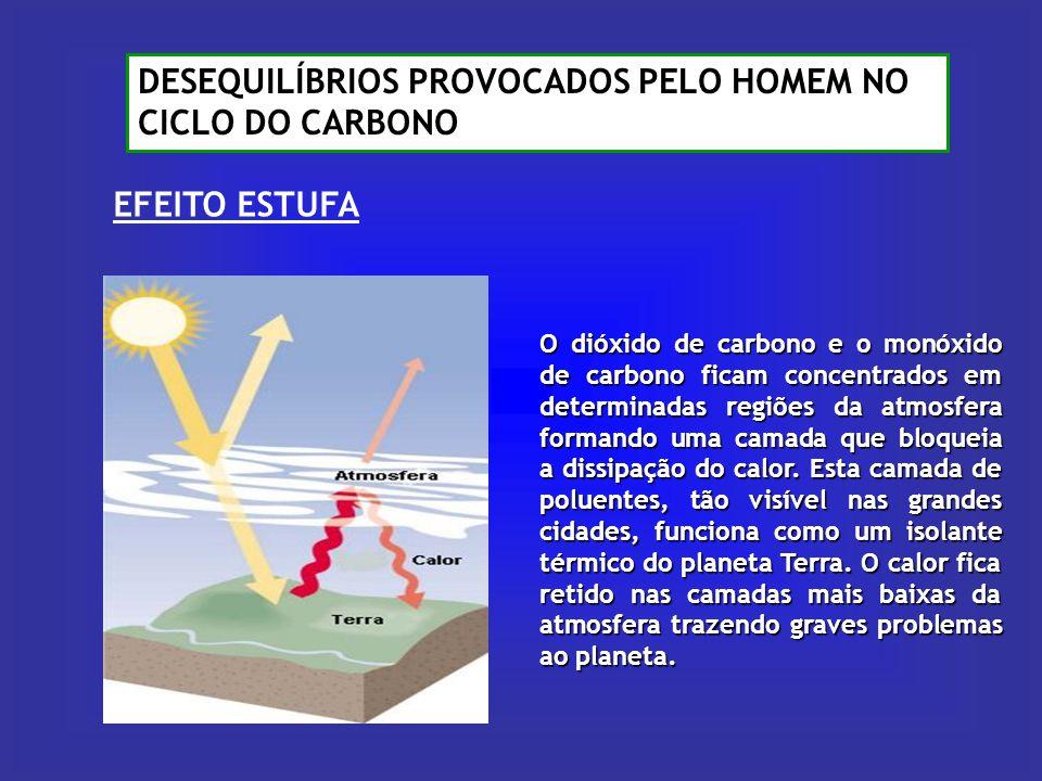 O dióxido de carbono e o monóxido de carbono ficam concentrados em determinadas regiões da atmosfera formando uma camada que bloqueia a dissipação do