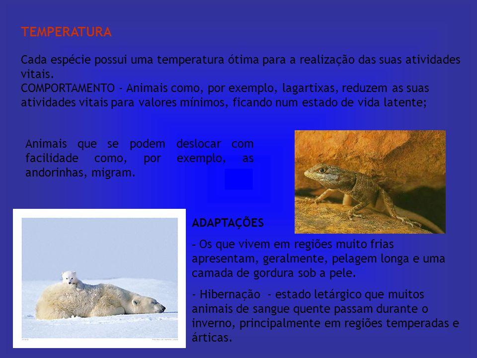 TEMPERATURA Cada espécie possui uma temperatura ótima para a realização das suas atividades vitais. COMPORTAMENTO - Animais como, por exemplo, lagarti