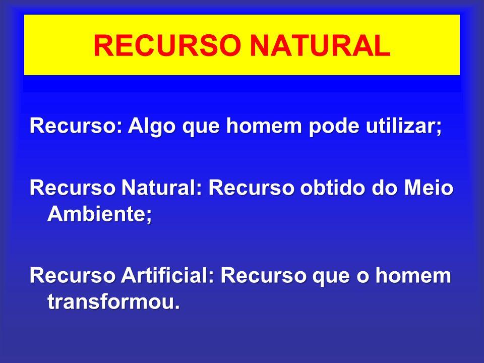 RECURSO NATURAL Recurso: Algo que homem pode utilizar; Recurso Natural: Recurso obtido do Meio Ambiente; Recurso Artificial: Recurso que o homem trans