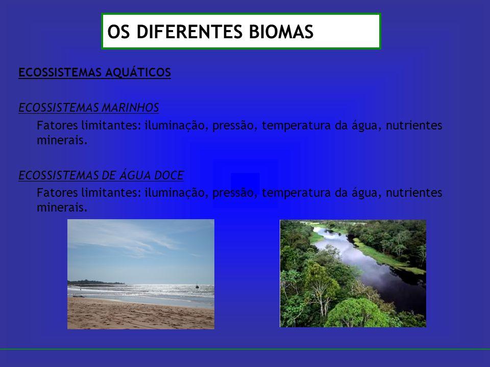 ECOSSISTEMAS AQUÁTICOS ECOSSISTEMAS MARINHOS Fatores limitantes: iluminação, pressão, temperatura da água, nutrientes minerais. ECOSSISTEMAS DE ÁGUA D
