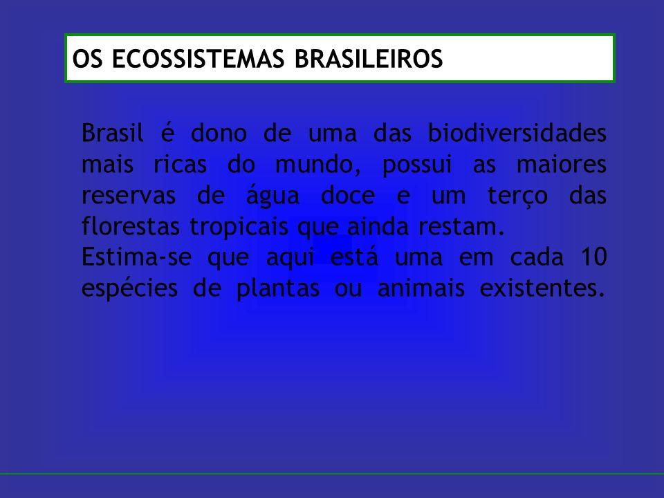 Brasil é dono de uma das biodiversidades mais ricas do mundo, possui as maiores reservas de água doce e um terço das florestas tropicais que ainda res