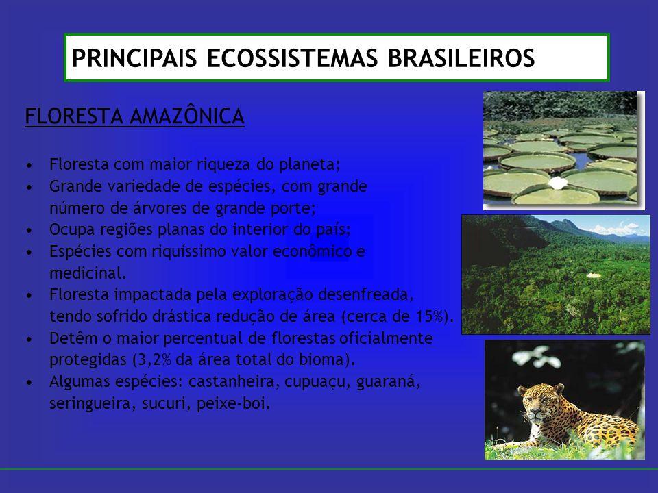 FLORESTA AMAZÔNICA Floresta com maior riqueza do planeta; Grande variedade de espécies, com grande número de árvores de grande porte; Ocupa regiões pl
