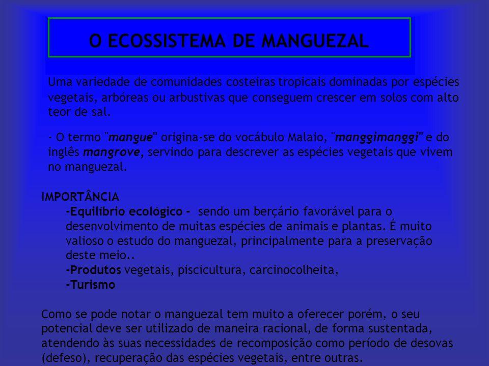 O ECOSSISTEMA DE MANGUEZAL Uma variedade de comunidades costeiras tropicais dominadas por espécies vegetais, arbóreas ou arbustivas que conseguem cres