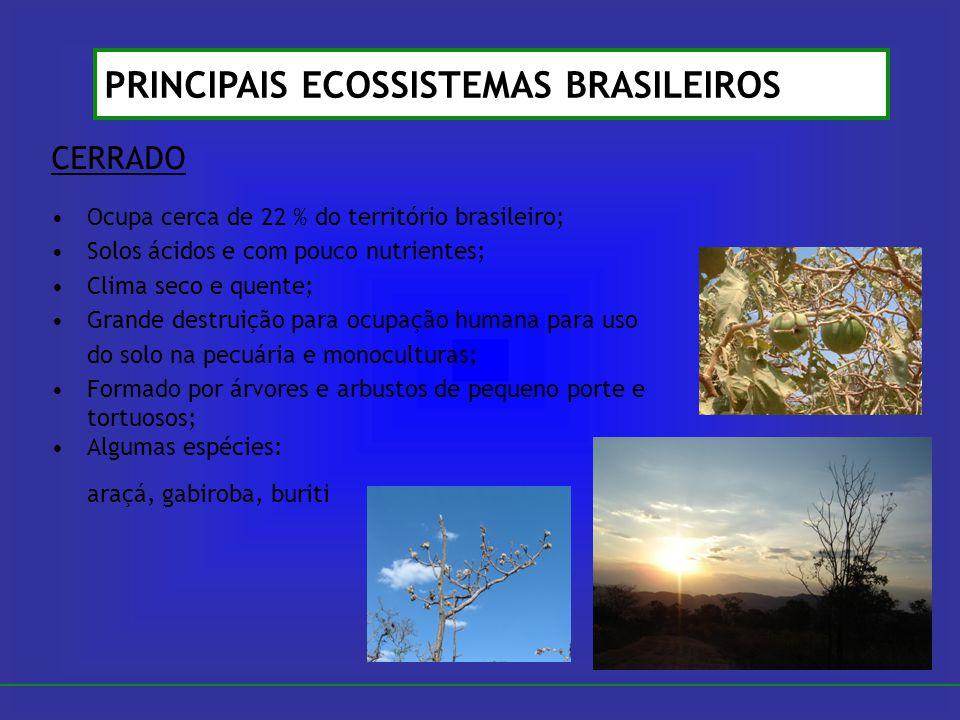 CERRADO Ocupa cerca de 22 % do território brasileiro; Solos ácidos e com pouco nutrientes; Clima seco e quente; Grande destruição para ocupação humana