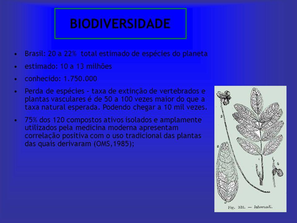 BIODIVERSIDADE Brasil: 20 a 22% total estimado de espécies do planeta estimado: 10 a 13 milhões conhecido: 1.750.000 Perda de espécies – taxa de extin