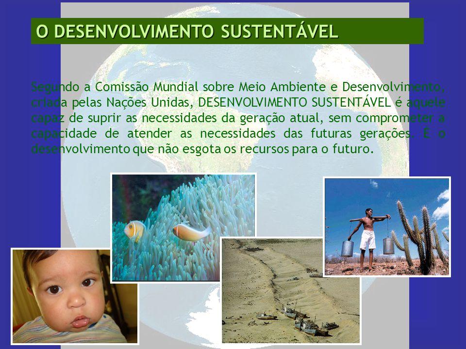 O DESENVOLVIMENTO SUSTENTÁVEL Segundo a Comissão Mundial sobre Meio Ambiente e Desenvolvimento, criada pelas Nações Unidas, DESENVOLVIMENTO SUSTENTÁVE