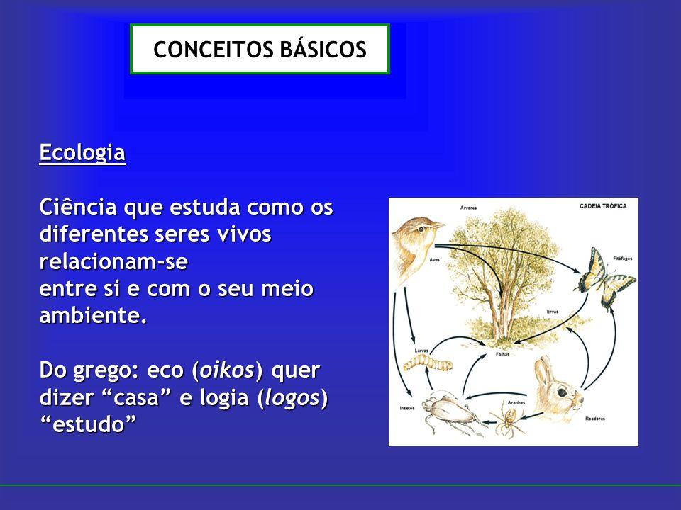 CONCEITOS BÁSICOS Ecologia Ciência que estuda como os diferentes seres vivos relacionam-se entre si e com o seu meio ambiente. Do grego: eco (oikos) q
