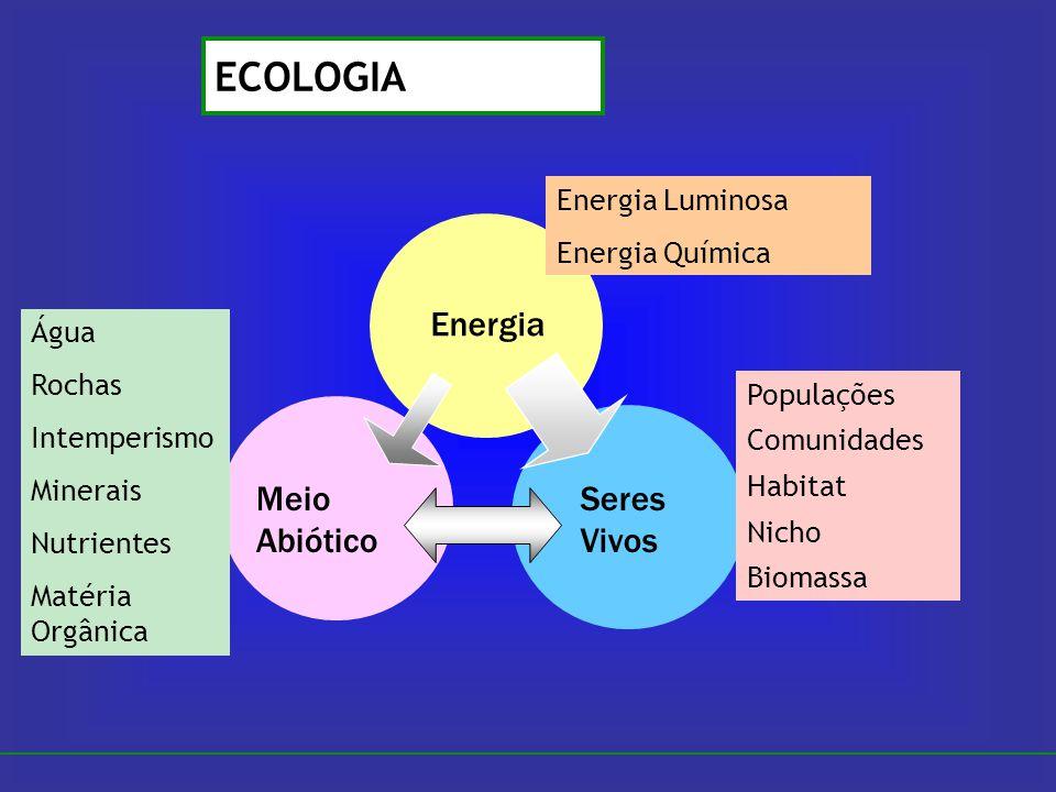 Energia Seres Vivos Meio Abiótico Populações Comunidades Habitat Nicho Biomassa Água Rochas Intemperismo Minerais Nutrientes Matéria Orgânica Energia