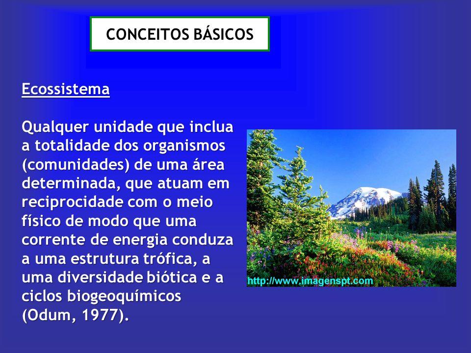 CONCEITOS BÁSICOS Ecossistema Qualquer unidade que inclua a totalidade dos organismos (comunidades) de uma área determinada, que atuam em reciprocidad