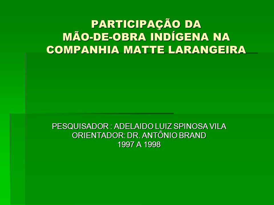 PARTICIPAÇÃO DA MÃO-DE-OBRA INDÍGENA NA COMPANHIA MATTE LARANGEIRA PESQUISADOR : ADELAIDO LUIZ SPINOSA VILA ORIENTADOR: DR. ANTÔNIO BRAND 1997 A 1998