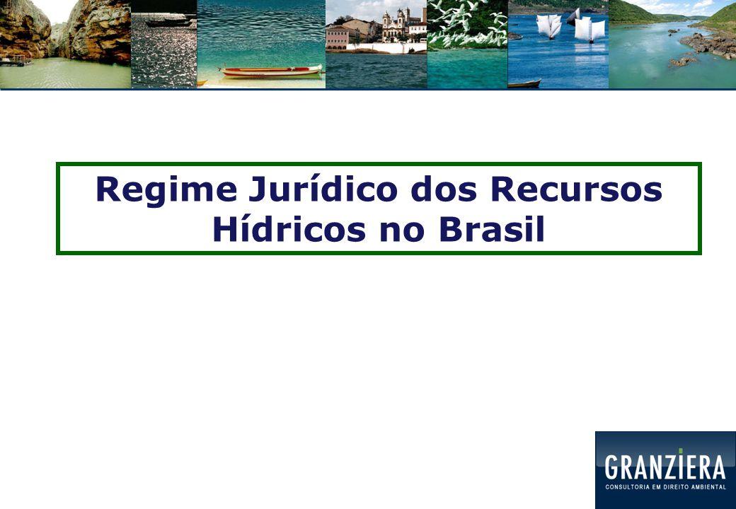 C ONSTITUIÇÃO FEDERAL: DOMÍNIO União e Estados Não há domínio municipal Mas: pode haver delegação, no caso de rios localizados em um único Município