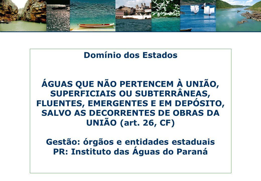 Rio São Lourenço, MT Rios de domínio estadual Tibagi – PR Tietê – SP Velhas – MG Preguiça – MA Tamanduateí – SP