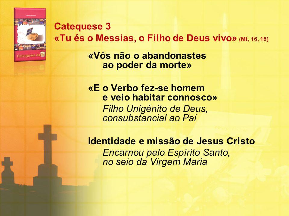 Catequese 3 «Tu és o Messias, o Filho de Deus vivo» (Mt, 16, 16) «Vós não o abandonastes ao poder da morte» «E o Verbo fez-se homem e veio habitar con