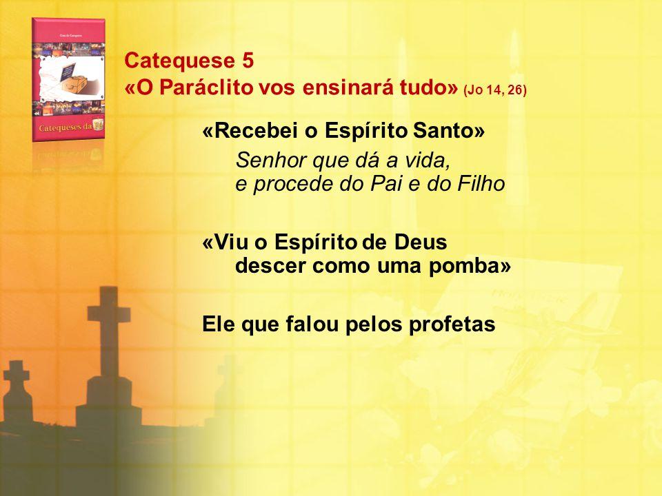 Catequese 5 «O Paráclito vos ensinará tudo» (Jo 14, 26) «Recebei o Espírito Santo» Senhor que dá a vida, e procede do Pai e do Filho «Viu o Espírito d