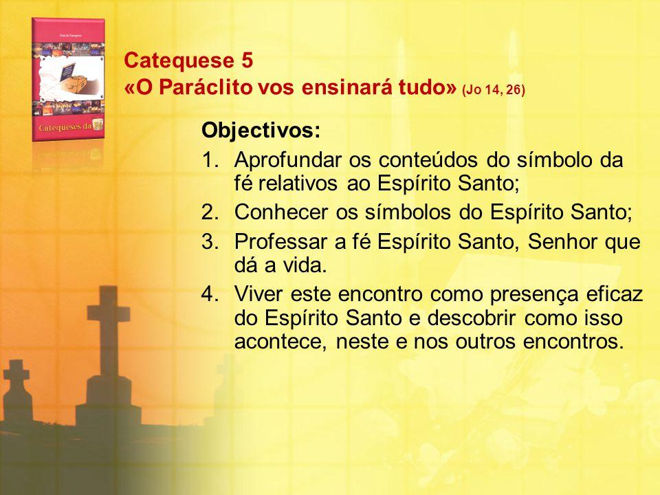 Catequese 5 «O Paráclito vos ensinará tudo» (Jo 14, 26) Objectivos: 1.Aprofundar os conteúdos do símbolo da fé relativos ao Espírito Santo; 2.Conhecer