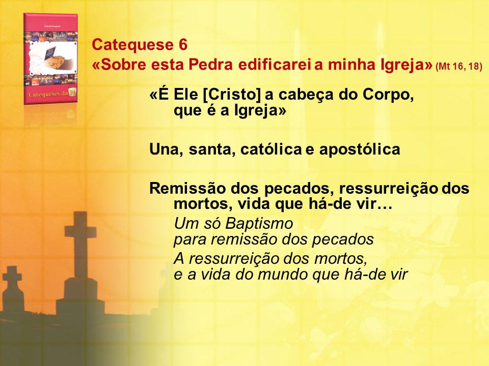 Catequese 6 «Sobre esta Pedra edificarei a minha Igreja» (Mt 16, 18) «É Ele [Cristo] a cabeça do Corpo, que é a Igreja» Una, santa, católica e apostól
