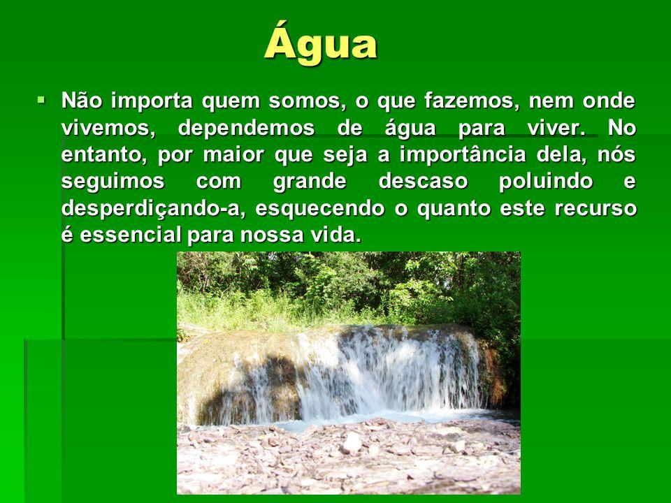 Água  Não importa quem somos, o que fazemos, nem onde vivemos, dependemos de água para viver.
