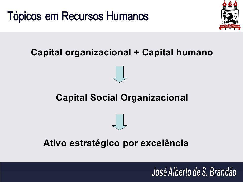 Capital organizacional + Capital humano Capital Social Organizacional Ativo estratégico por excelência Capa da Obra