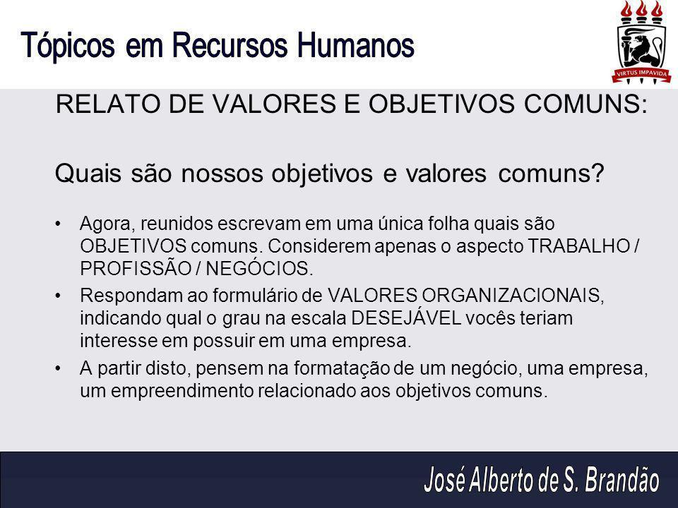RELATO DE VALORES E OBJETIVOS COMUNS: Quais são nossos objetivos e valores comuns.
